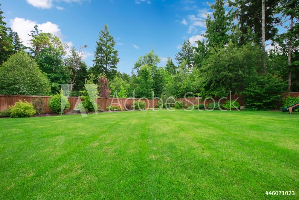 AdobeStock_46071023_Preview